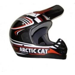 Arctic-Cat salmas